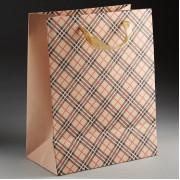 DELTA Пакет подарочный 23х18х10см ПАК2-061